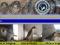 Rinnovato il sito di Birdcam.it