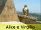 Falchi pellegrini Alice e Virgilio
