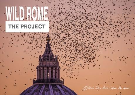 Al via il crowfunding per Wild Rome